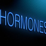 Hunger Hormones – Fixing Your Leptin Levels