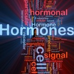Did you know you have two hunger hormones? Leptin is the second…