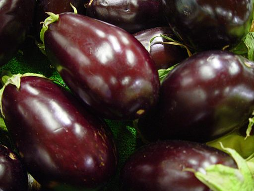 Eggplant is a member of the nightshade family