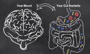 Depression and the Gut Brain Connection