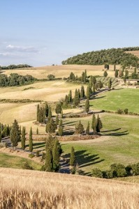 healthy diets are easy in the tuscany countryside