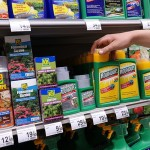 Monsanto Wrongful Death Suit…do you use Roundup??