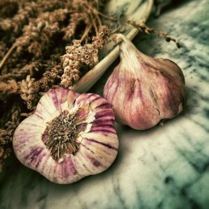 Garlic And Your Immune System